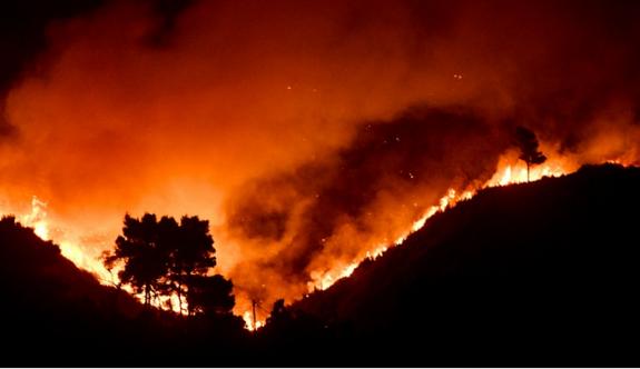 Atina'nın güneydoğusundaki yangında kundaklama olasılığı
