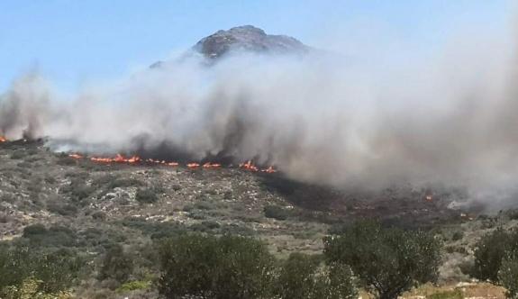 Pazartesi son 24 saatte 46 orman yangını
