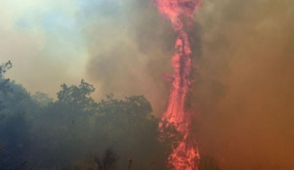 Mora'da bulunan Argolis kentinde yangın